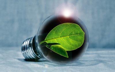 Electricité verte : est-ce 100% renouvelable ?